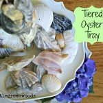 Tiered Oyster Tray