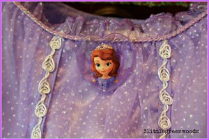 Budget Friendly Sofia the First Birthday Party @ 3littlegreenwoods