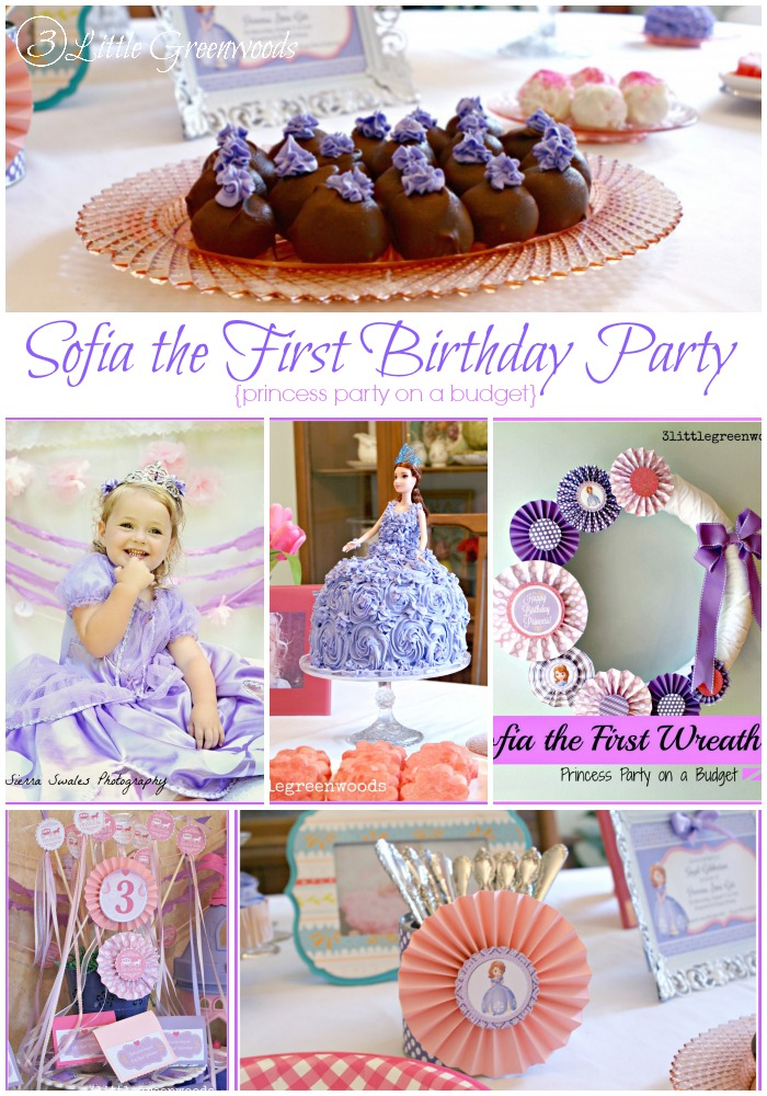 Sofia the First Birthday Party {princess party on a budget} http:www.3littlegreenwoods.com