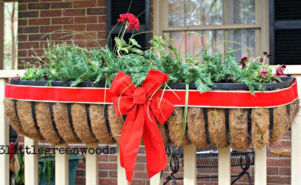 Cheery Christmas Flower Boxes @ 3littlegreenwoods