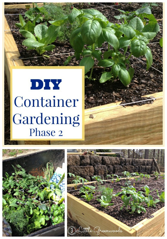 DIY Container Garden ~ Planning and Planting a Vegetable Garden