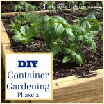 DIY Container Garden ~ Planning & Planting