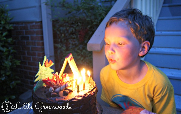 Backyard Campout Birthday Cake by 3 Little Greenwoods
