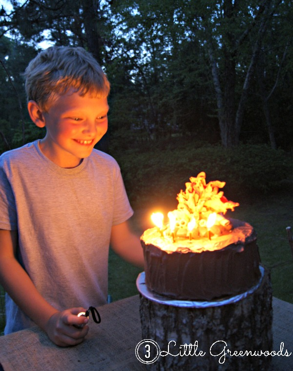 Campfire Birthday Cake by 3 Little Greenwoods
