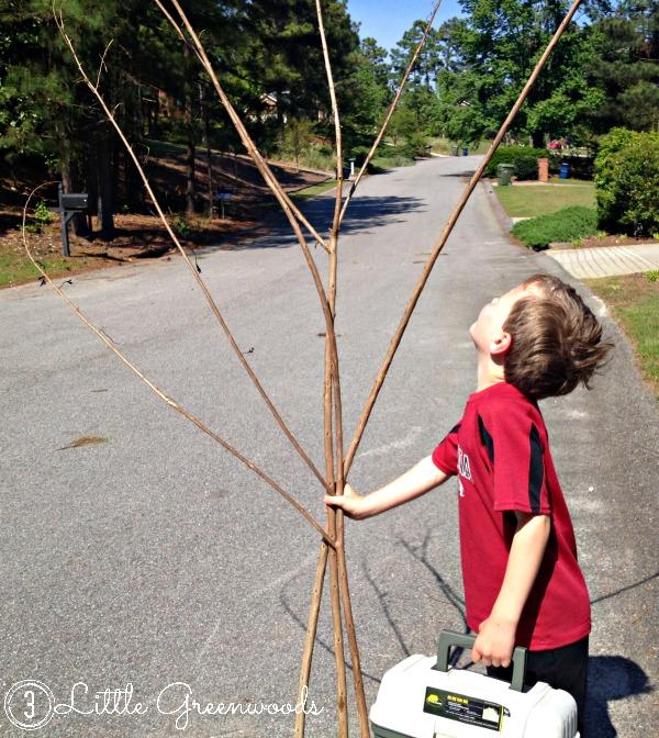 kid made garden trellis