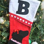 DIY Dog Christmas Stocking {Cat Stocking too!}