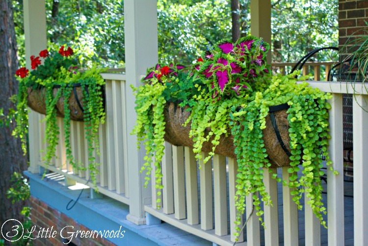 Must Pin Post For Awesome Curb Eal Best Ideas Hanging Baskets To Turn Your