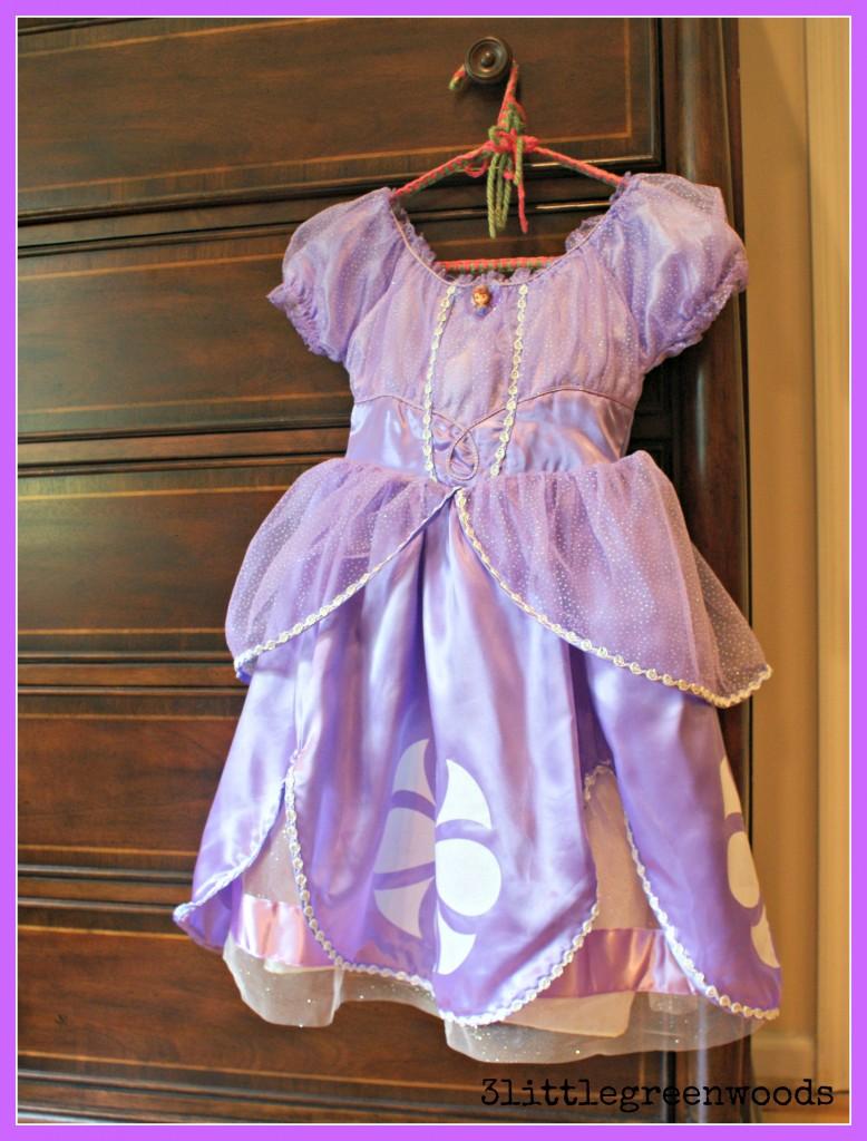 Her first Princess Dress