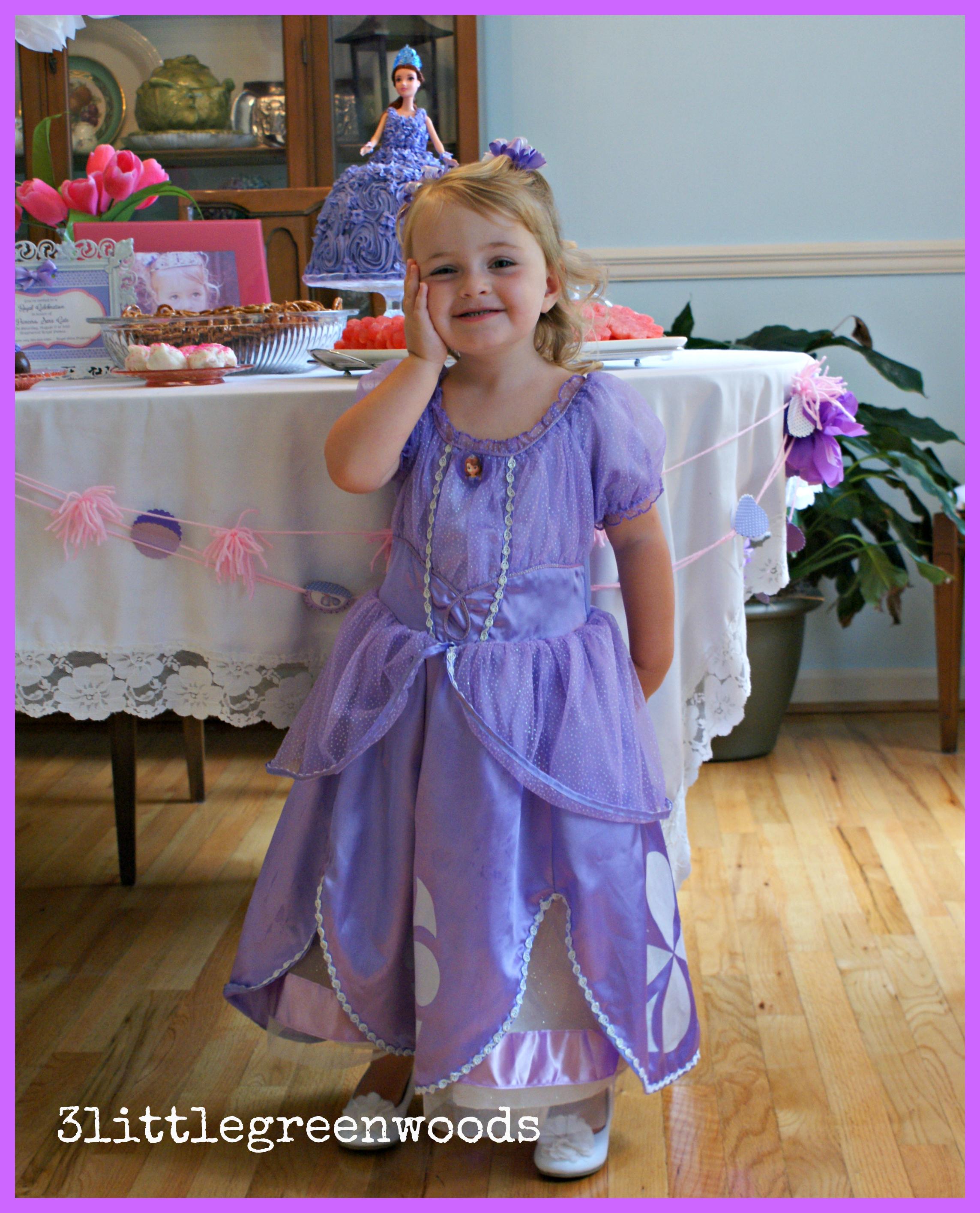 5ee82faf6 ... Sofia the First Princess Dress daily! princess party