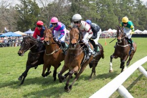 Steeplechase Races in Aiken, SC