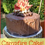 How to Make Campfire Birthday Cake