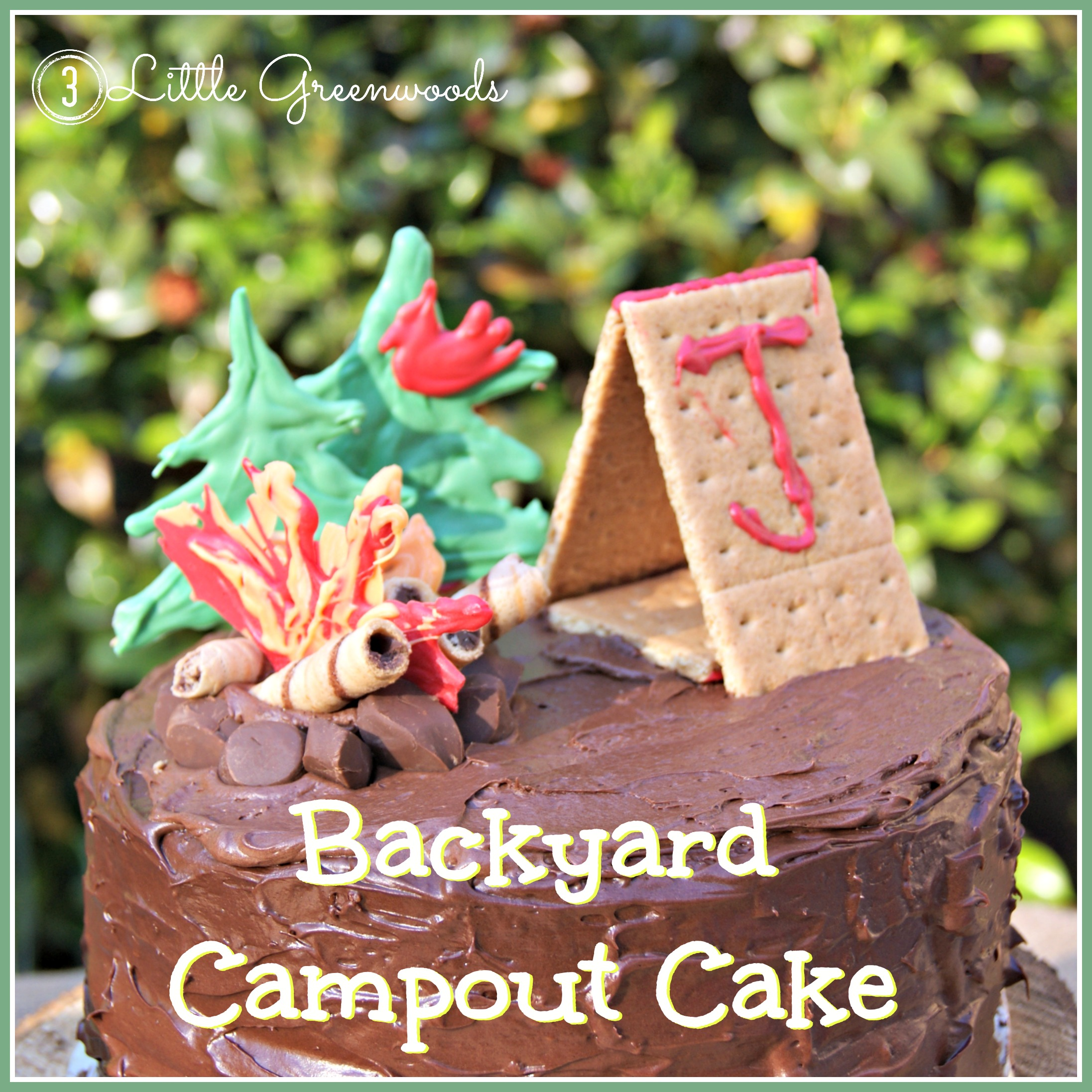 Sensational Backyard Campout Birthday Cake 3 Little Greenwoods Personalised Birthday Cards Cominlily Jamesorg