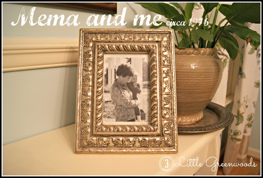 Mema and me by 3 Little Greenwoods