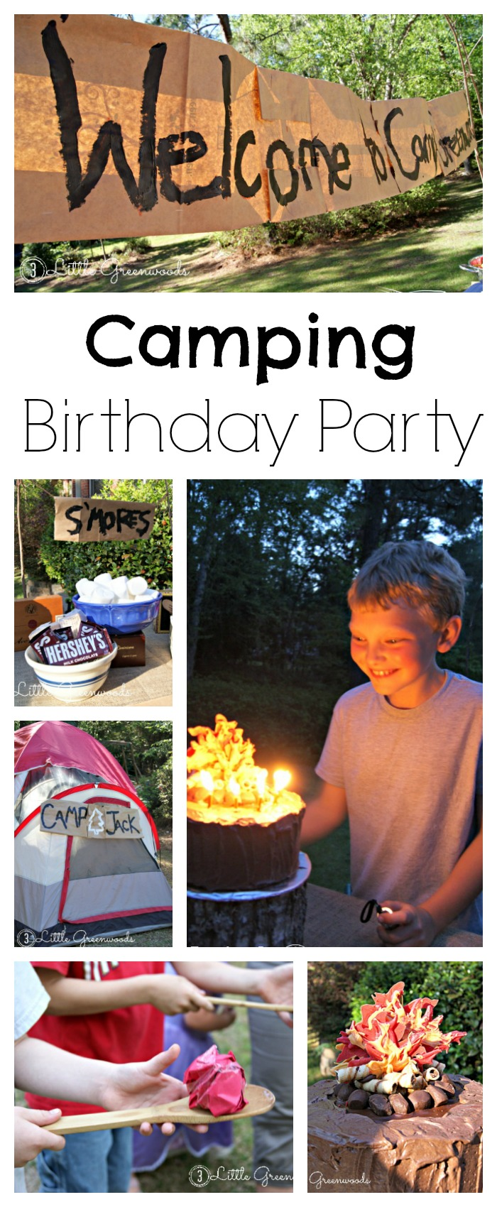 58c5c9b50 camping birthday party ideas - 3 Little Greenwoods