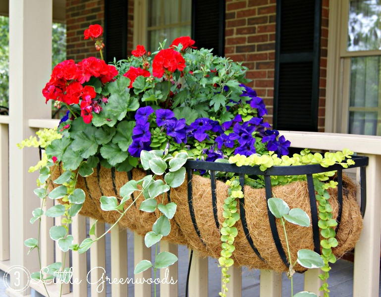 simple summer planters