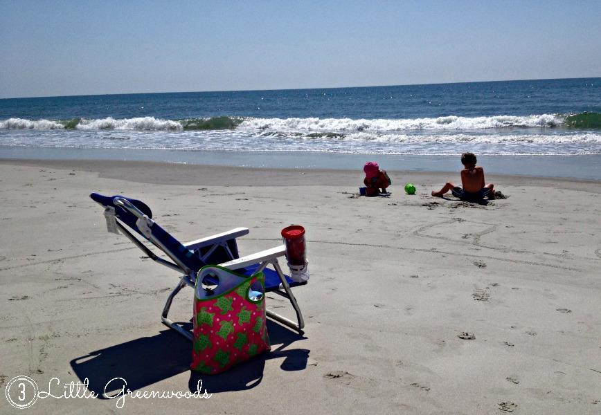 Summer Fun 2014 by 3 Little Greenwoods