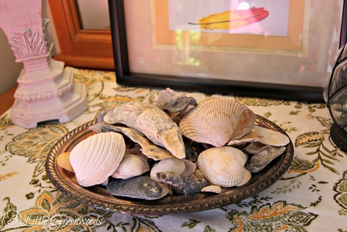 Fall Seashells