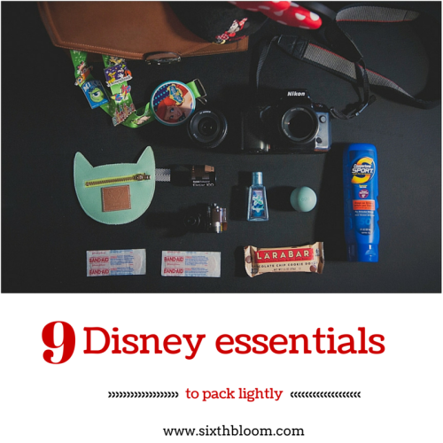 9 Disney Essentials to Pack Lightly