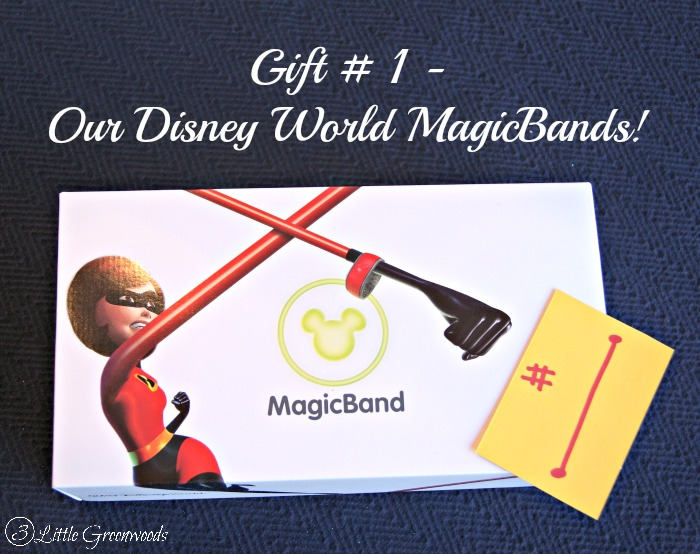 Disney World Reveal:How To Tell Your Kids You Are Going to Disney World! http://www. 3littlegreenwoods.com