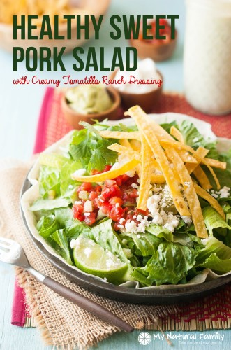 Healthy-Pulled-Pork-Salad-1