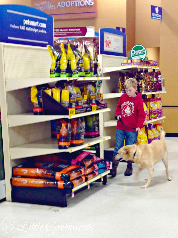 purina-one-petsmart 2