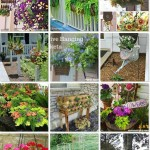 Hanging Flower Basket Tips, Tricks, and Inspirations