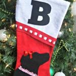 DIY Dog Christmas Stocking {Cat Stocking too!}