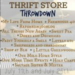 Thrift Store Throwdown: What Would You Make?