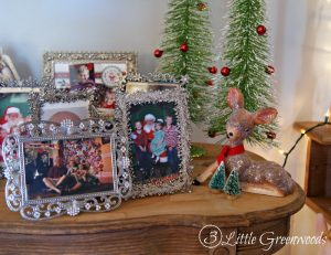Christmas Decorating Ideas in the Foyer