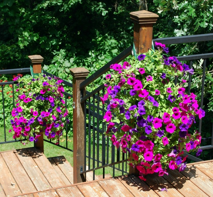 Wooden Decks Designs Deck Railing Planter Boxes Hanging: How To Add Fabulous Curb Appeal With Flower Box Ideas